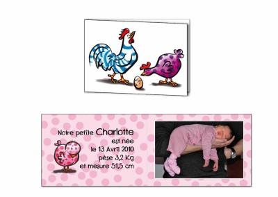 """Faire-part naissance """"Poulette"""""""