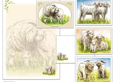 """Illustrations pour """"La ferme des sapins"""" éleveurs de chèvres angora."""