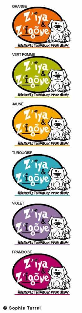 Déclinaisons de couleurs d'un logo